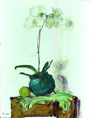 whiteorchid2.jpg
